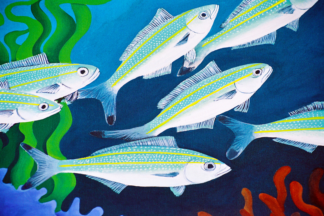A painting of a school of black tipped fusilier fish darting through the coral